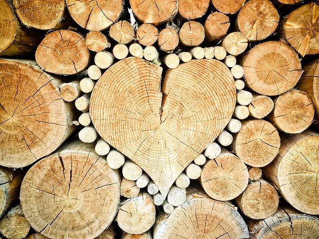 srdce z polen